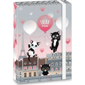 Füzetbox A4 cica 20' Think Pink - Ars Una