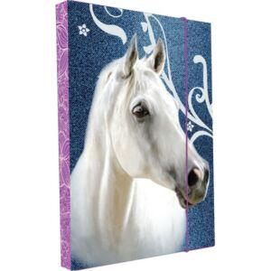FüzetboxA/5 KPP HORSE / LOVAS
