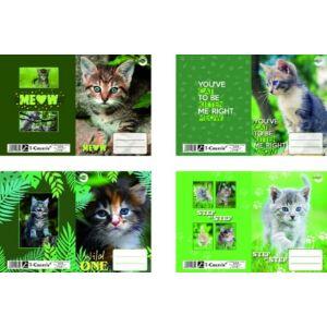 Füzetborító A5 Kitten T-Creativ bújtatós cicás tankönyv és füzetborító kollekció