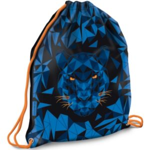 Tornazsák Ars Una Sportzsák Black Panther (5082) 21