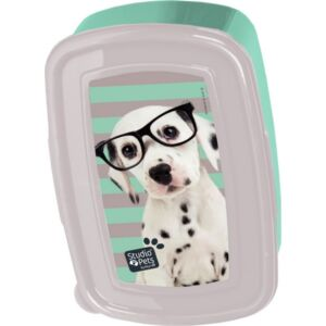 Uzsonnás doboz Paso dalmata kutya szemüvegben Rachael Hale